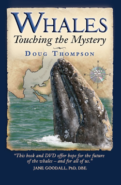Book Cover: Whales, Touching the Mystery by Doug Thompson of DolphinWorks