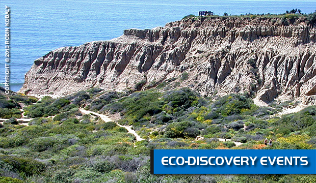 DolphinWorks | Eco-Discovery Adventures
